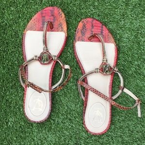 vero cuoio red snake print sandals